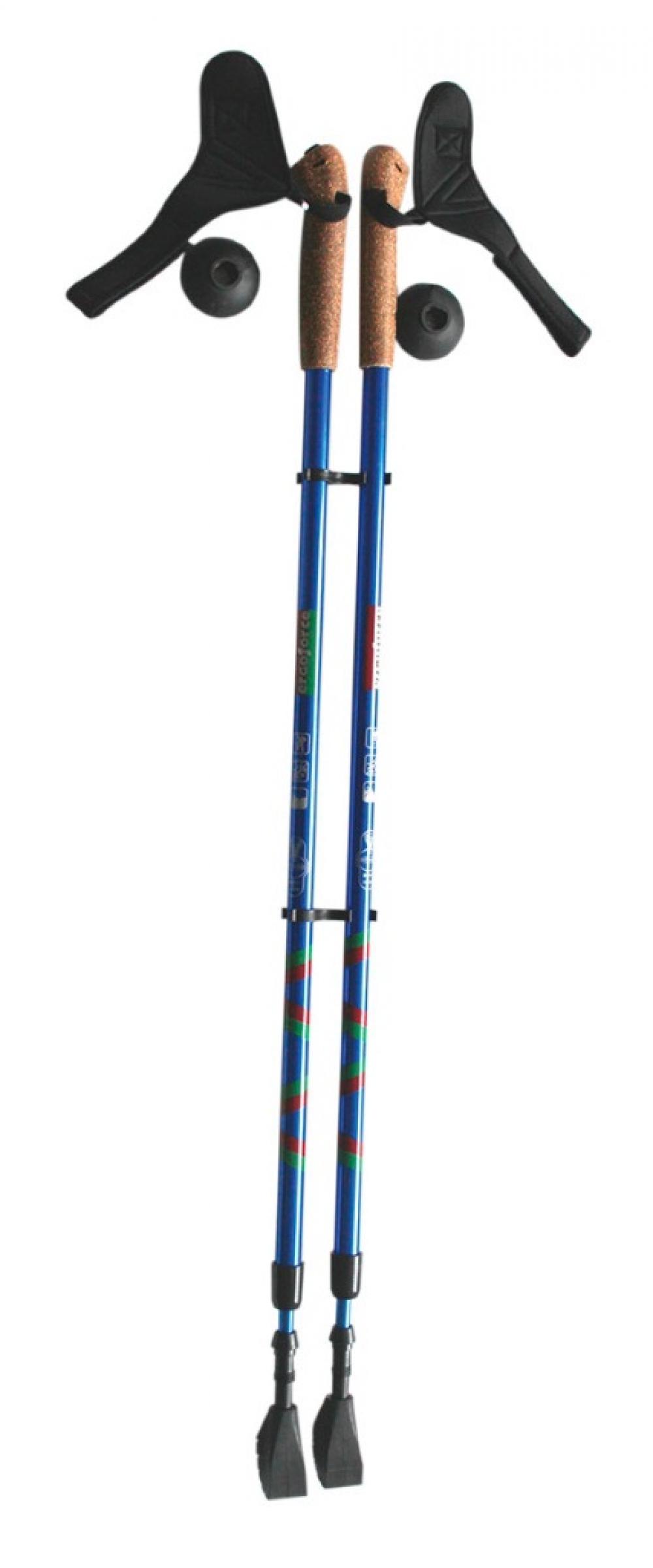 Трости для «скандинавской» ходьбы Е 0673 (Атлетика)